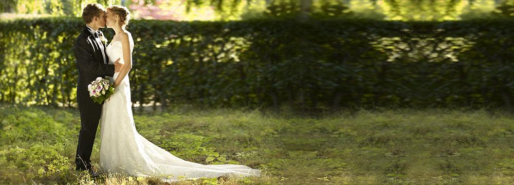 Bryllupsfoto i skoven farve